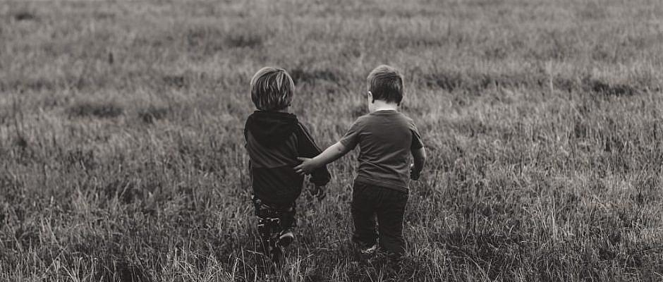 empatie