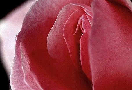 orgasme feminine